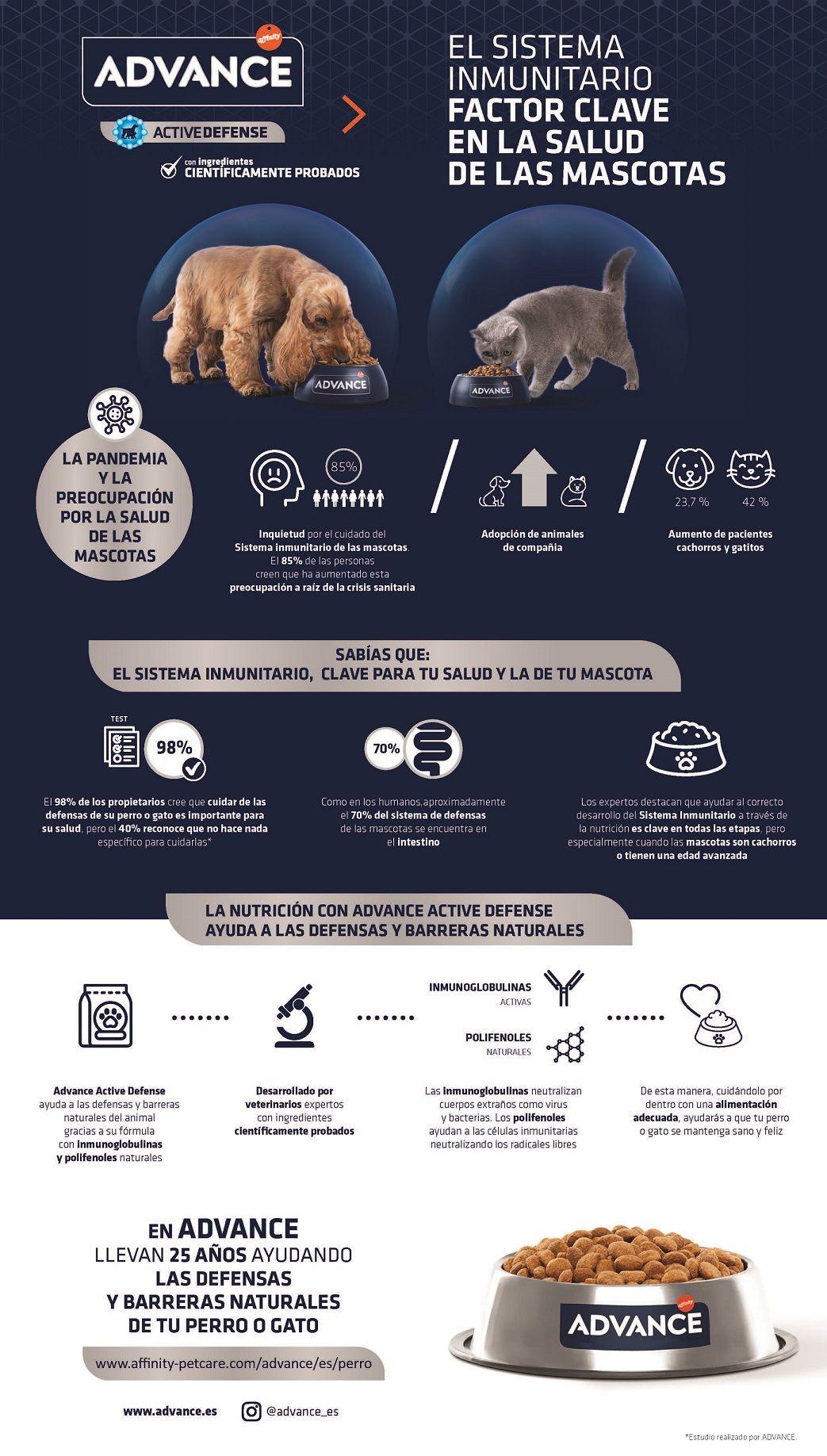 Foto de Infografía sobre el sistema inmunitario de las mascotas